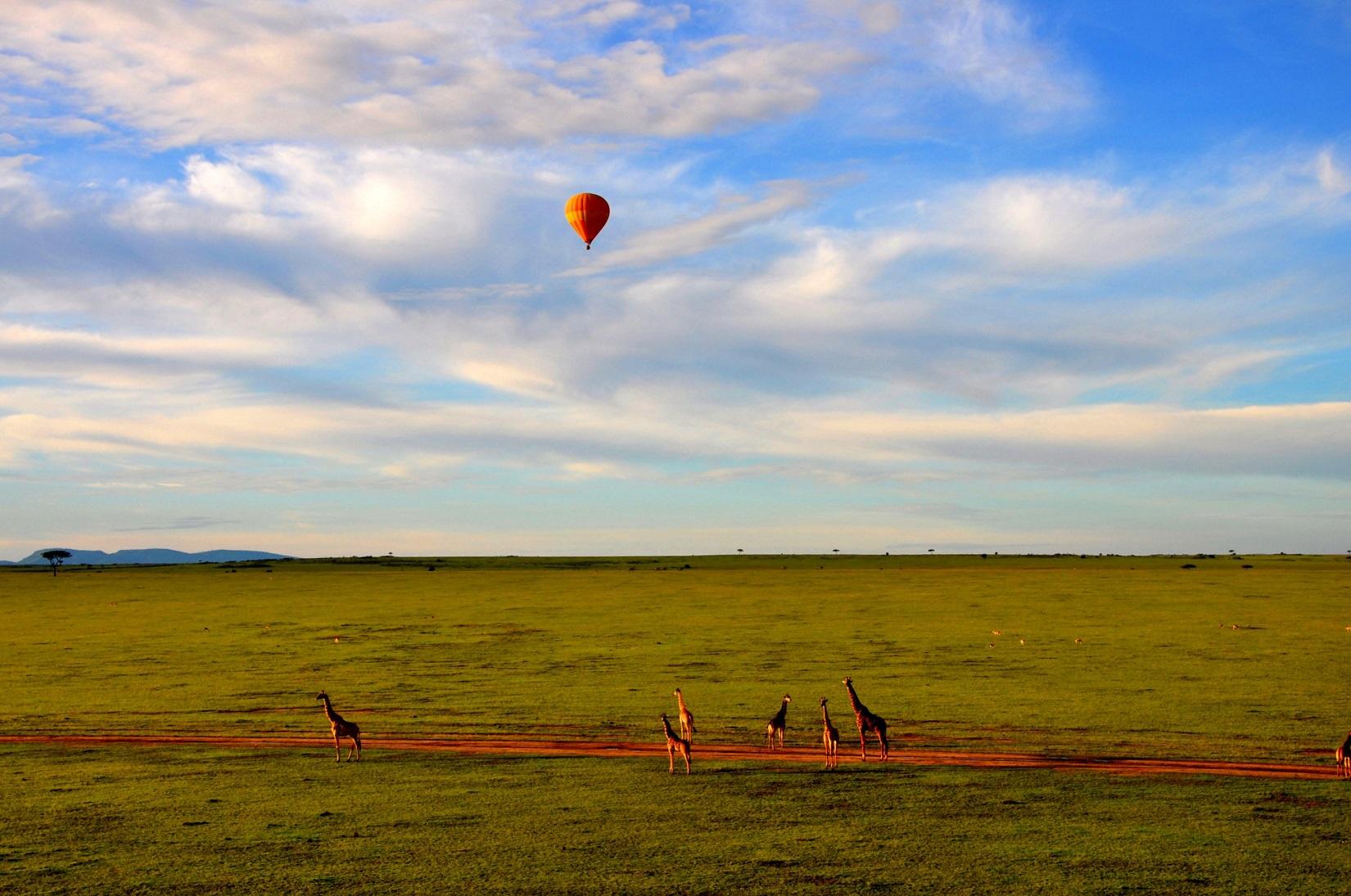 Hvornår er det bedst at rejse til Tanzania? | TANZANIA TOURS