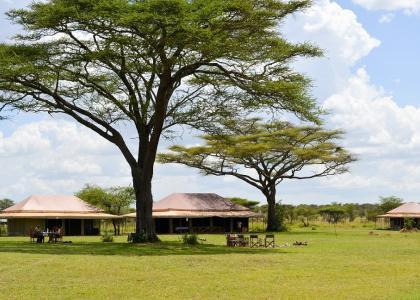 Luksus teltlejr i Serengeti, Tanzania