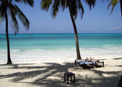 Der er masser af plads til at slappe af mellem palmerne