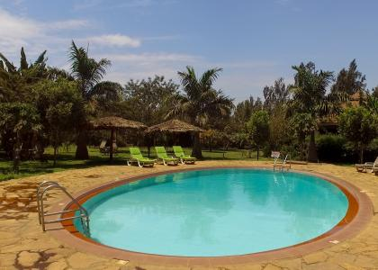 Der er swimmingpool i den hyggelige eksotiske have