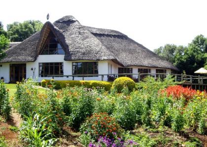 Det charmerende gamle hovedhus på Ngorongoro Farm House - med en stork på det stråtækte tag
