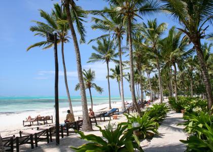 Junior Suites ligger lige ned til stranden, spredt ud over en stor, fredelig have