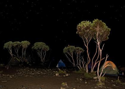 Telte med stjernehimmel på Kilimanjaro