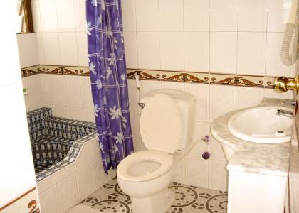 Bad og toilet på Tembo Hotel