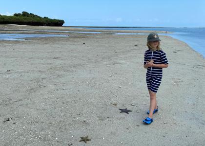 Ved lavvande kan man gå en spændende tur til nabo-øen